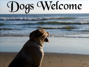 dogs-welcome